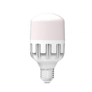 Đèn LED bulb công suất lớn Điện Quang ĐQ LEDBU10 10W 10765AW